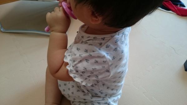カミカミ期☆本日の離乳食(7/31)と大好き歯磨き!